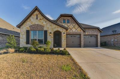 Waxahachie Single Family Home For Sale: 356 S Hill Drive