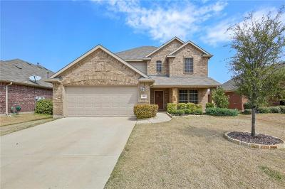 Little Elm Single Family Home For Sale: 1401 Villa Paloma Boulevard