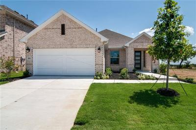 Little Elm Single Family Home For Sale: 801 Bent Brook Road
