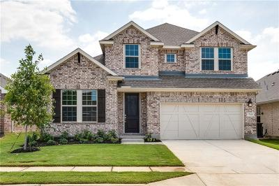 Little Elm Single Family Home For Sale: 713 Bent Brook Road