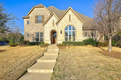 Collin County Single Family Home For Sale: 7411 Rockyford Drive