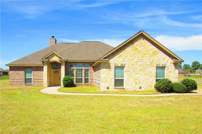 Parker County Single Family Home For Sale: 101 Eagles Crest Lane