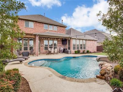 Prosper Single Family Home For Sale: 1241 Circle J Trail