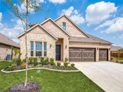 Little Elm Single Family Home For Sale: 1424 Benavites Drive