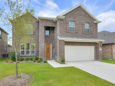 Rowlett Single Family Home For Sale: 6831 Elm Street