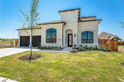 Frisco Single Family Home For Sale: 7455 Joshua Road