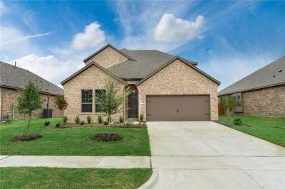 Denton County Single Family Home For Sale: 1609 Serra Drive