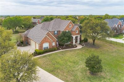 Parker Single Family Home For Sale: 4607 Springhill Estates Drive