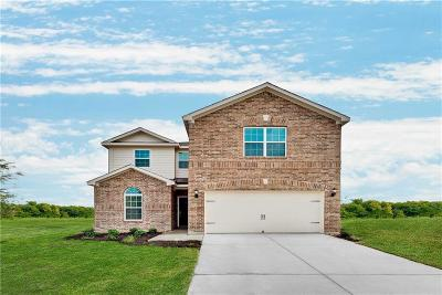 Dallas County, Denton County, Collin County, Cooke County, Grayson County, Jack County, Johnson County, Palo Pinto County, Parker County, Tarrant County, Wise County Single Family Home For Sale: 5901 Obsidian Creek Drive