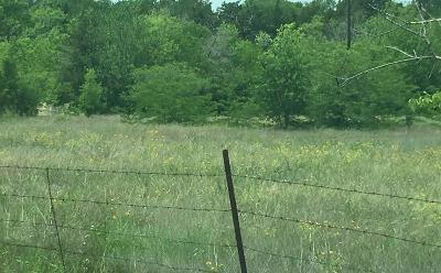Dallas, Garland, Mesquite, Sunnyvale, Forney, Rowlett, Sachse, Wylie Commercial Lots & Land For Sale: 5401 Witt Road