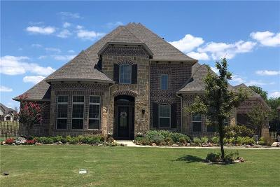 Allen Single Family Home For Sale: 603 Colt Trail