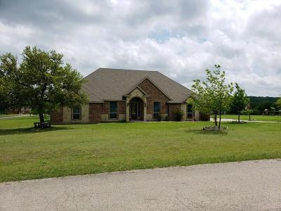 Parker County Single Family Home For Sale: 101 Palomino Court