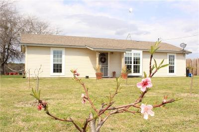 Parker County Single Family Home For Sale: 2498 Agnes Circle