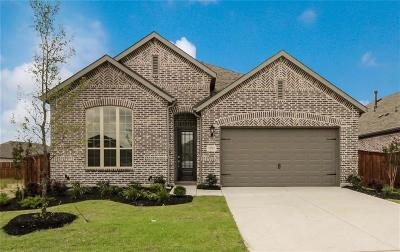 Denton County Single Family Home For Sale: 1704 Canter Court