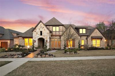 Rowlett Single Family Home For Sale: 7210 Scenic Drive