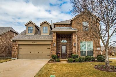 McKinney Single Family Home For Sale: 10000 Ransom Ridge Road