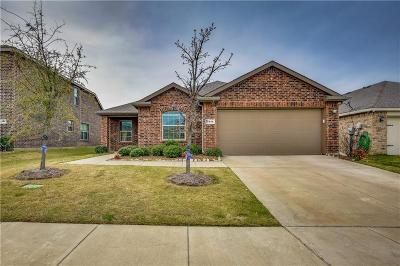 Collin County Single Family Home For Sale: 2116 Meadow View Drive