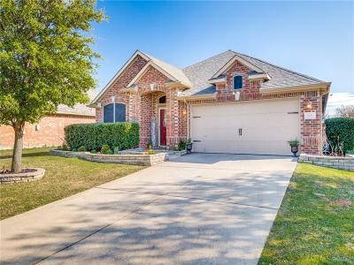 Little Elm Single Family Home For Sale: 2624 Cascade Cove Drive