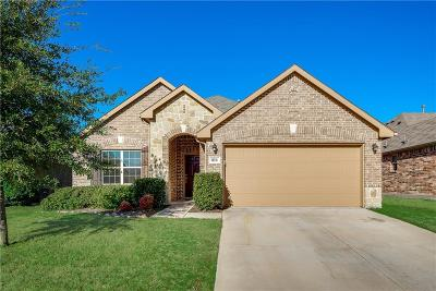 Little Elm Single Family Home For Sale: 816 Silvermoon Drive