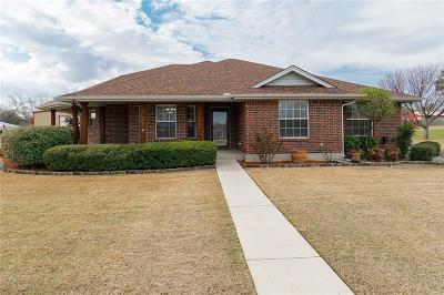 Denton County Single Family Home For Sale: 703 S Hardeman Circle