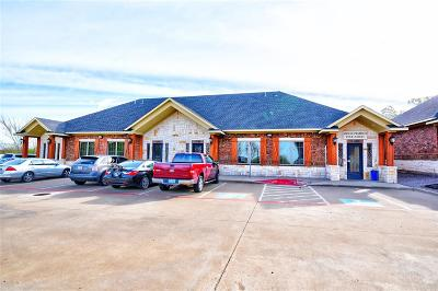 Frisco Commercial For Sale: 7000 Parkwood Boulevard #C400