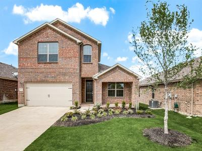 McKinney Single Family Home For Sale: 6012 Aster Drive