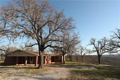 Mineral Wells TX Single Family Home For Sale: $350,000