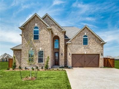 Celina Single Family Home For Sale: 4317 Caney Creek Circle