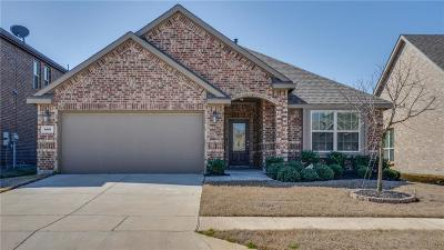 Little Elm Single Family Home For Sale: 808 Lake Woodland Drive