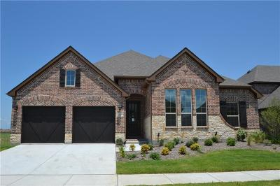 Little Elm Single Family Home For Sale: 821 Patio