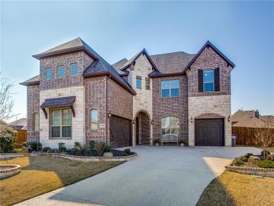 Little Elm Single Family Home For Sale: 13704 Vallanca Court