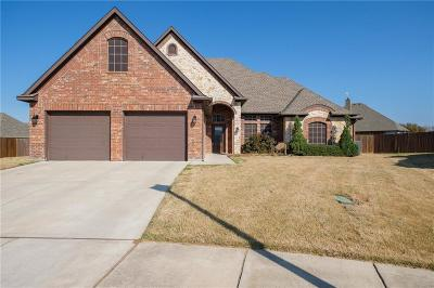 Decatur Single Family Home For Sale: 3004 Treasure View Drive