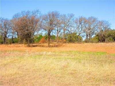 Parker County, Tarrant County, Wise County Residential Lots & Land For Sale: Lot 13 Nikki Trill Lane