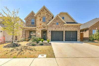 Flower Mound Single Family Home For Sale: 6371 Whiskerbrush Road