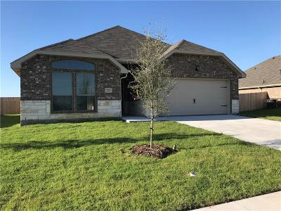 Collin County Single Family Home For Sale: 725 Long Prairie Drive