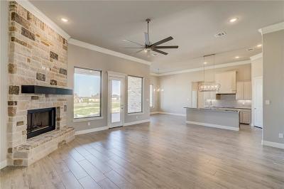 Springtown Single Family Home For Sale: 119 Stanford Lane