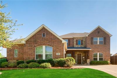 Euless Single Family Home For Sale: 1001 High Hawk Trail