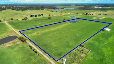 Ben Wheeler Residential Lots & Land For Sale: Tbd 7 Vzcr 4303