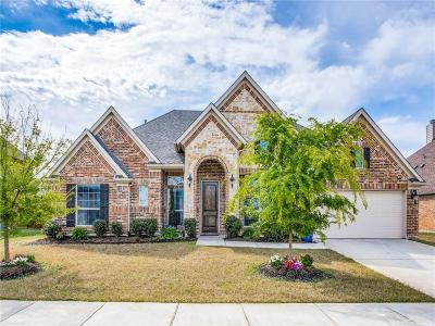 Little Elm Single Family Home For Sale: 2248 Hideaway Pointe Drive