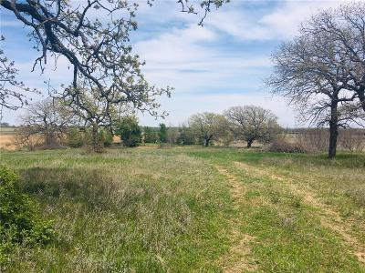 Comanche Farm & Ranch For Sale: 965 County Road 415