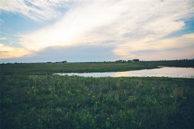 Tarrant County Farm & Ranch For Sale: 12203 E Rocky Creek Road