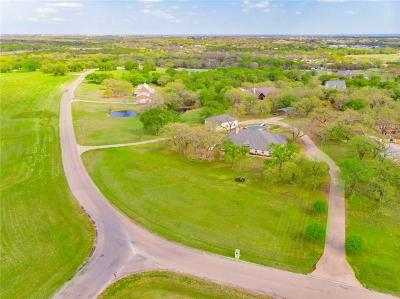 Parker County, Tarrant County, Hood County, Wise County Single Family Home For Sale: 2611 Wills Way Drive