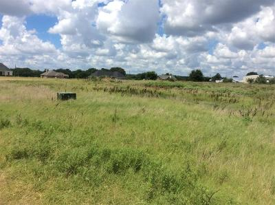 Parker County Residential Lots & Land For Sale: Tbd 1a N Katy Ranch Court N