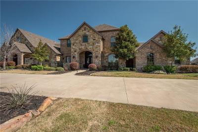 Forney Single Family Home For Sale: 15200 Skyview Lane