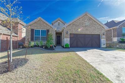 Lewisville Single Family Home For Sale: 207 Cielo Azure Lane
