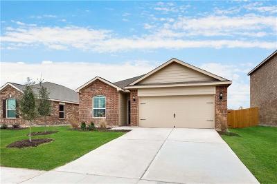 Anna Single Family Home For Sale: 209 Aaron Street