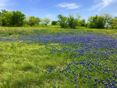 Grand Prairie Residential Lots & Land For Sale: 1094 Periwinkle Court