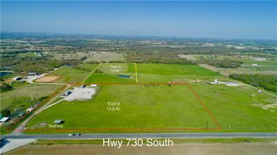 Decatur Farm & Ranch For Sale: Tract2 730 S Highway