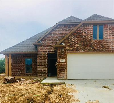 Denison Single Family Home For Sale: 3853 Iron Ore Drive