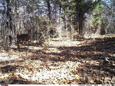 Cedar Creek Lake, Athens, Kemp Farm & Ranch For Sale: Co Road 4069